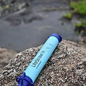 LifeStraw survival water filter